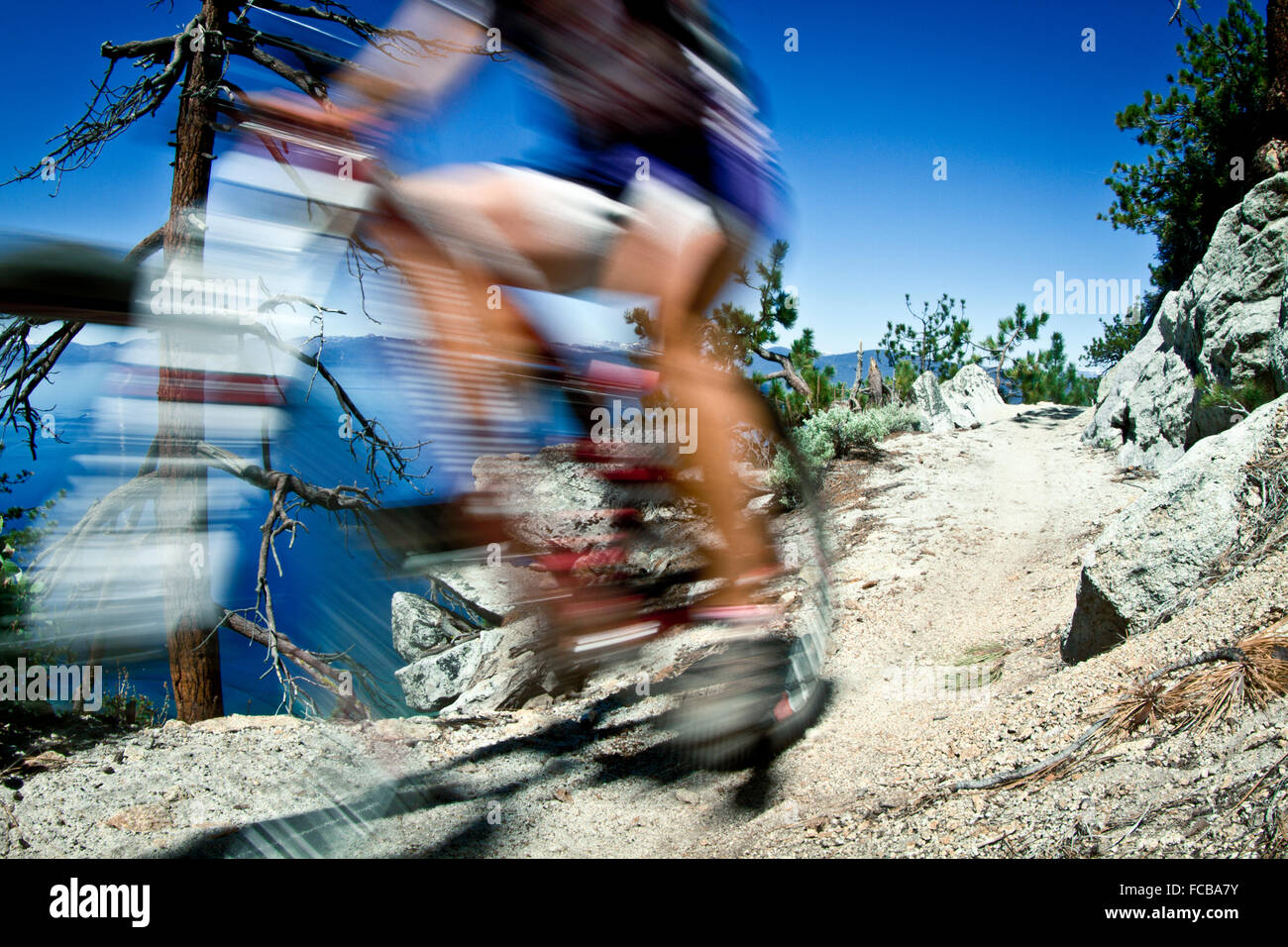 Mountain Biking on Flume Trail, Tahoe, CA - Stock Image