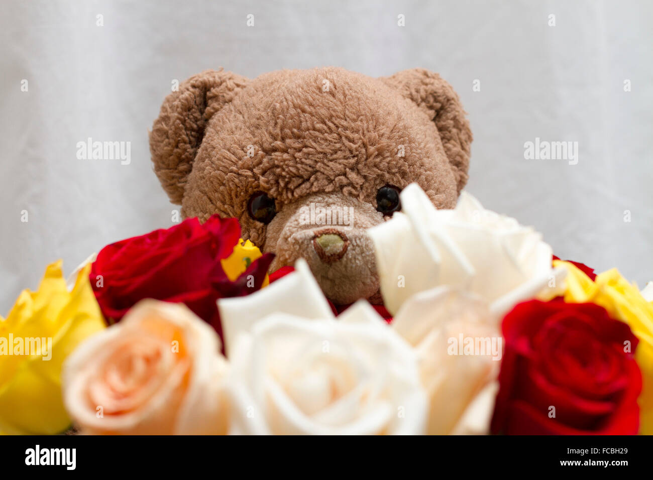 Teddy bear red rose stock photos teddy bear red rose stock images cute brown teddy bear giving a bouquets of white yellow red orange roses izmirmasajfo