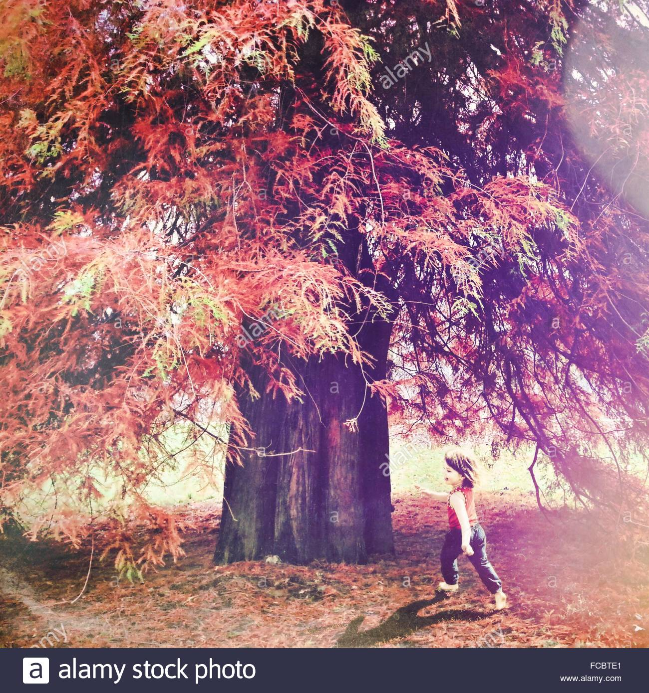 Full Length Of Girl Playing In Park During Autumn - Stock Image