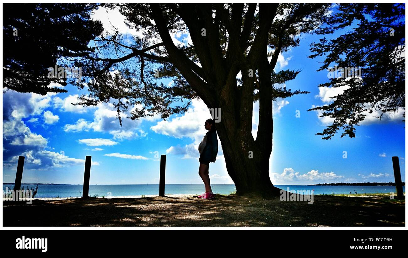 Woman Leaning Against A Tree At The Coast - Stock Image