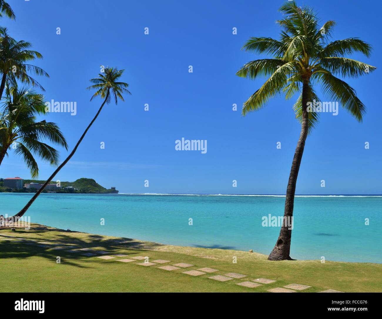 Palm Tree Island: Palm Tree On The Tropical Pacific Island Of Guam Stock