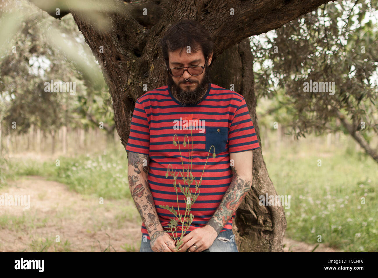 Man Holding Flower While Standing On Field - Stock Image