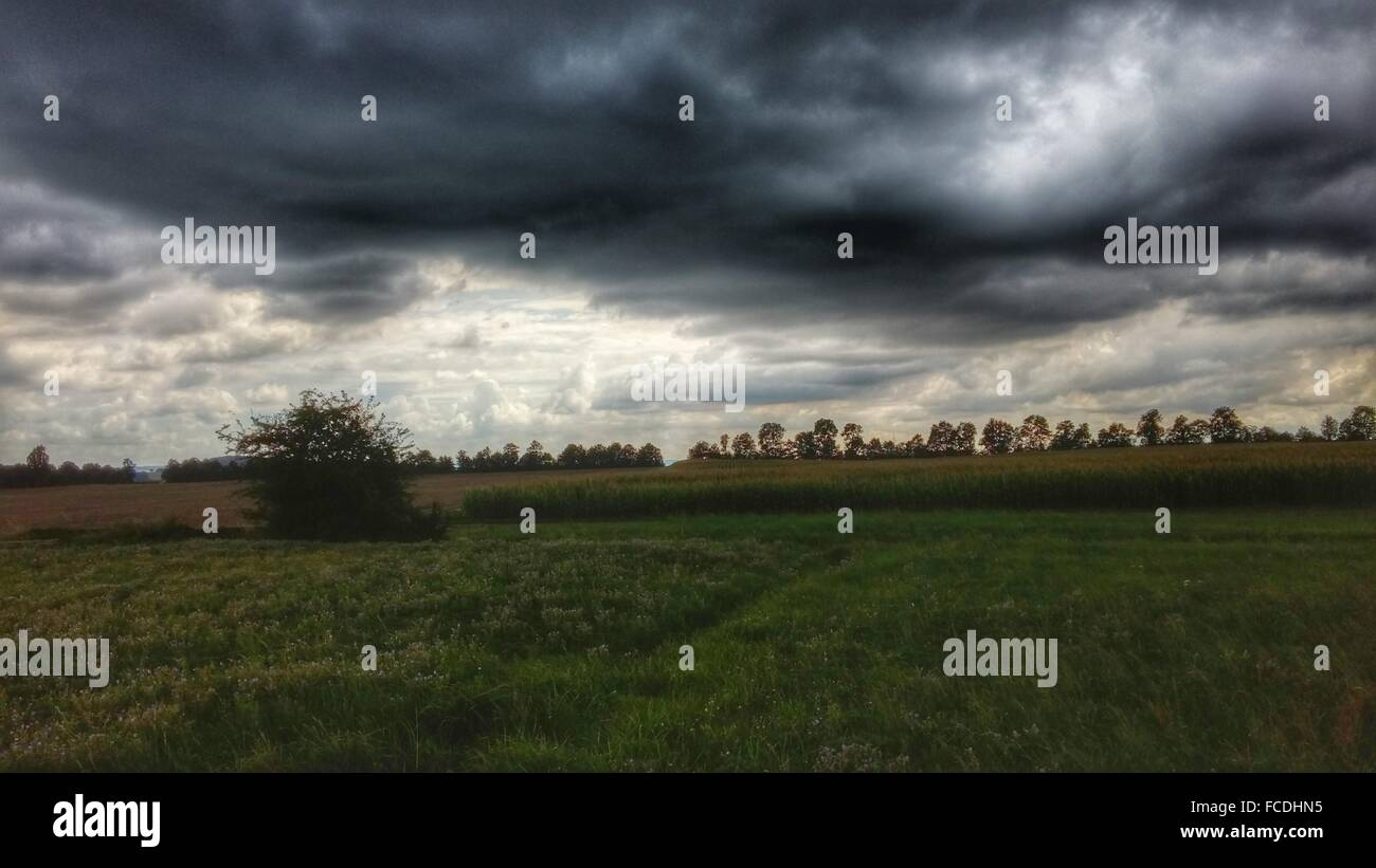 Overcast Sky Over Meadow Stock Photo