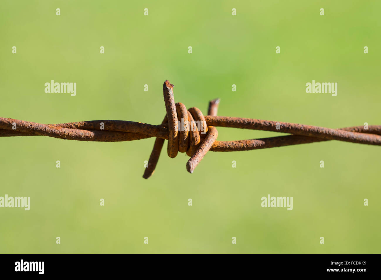 Rusty barbed wire fence Stock Photo
