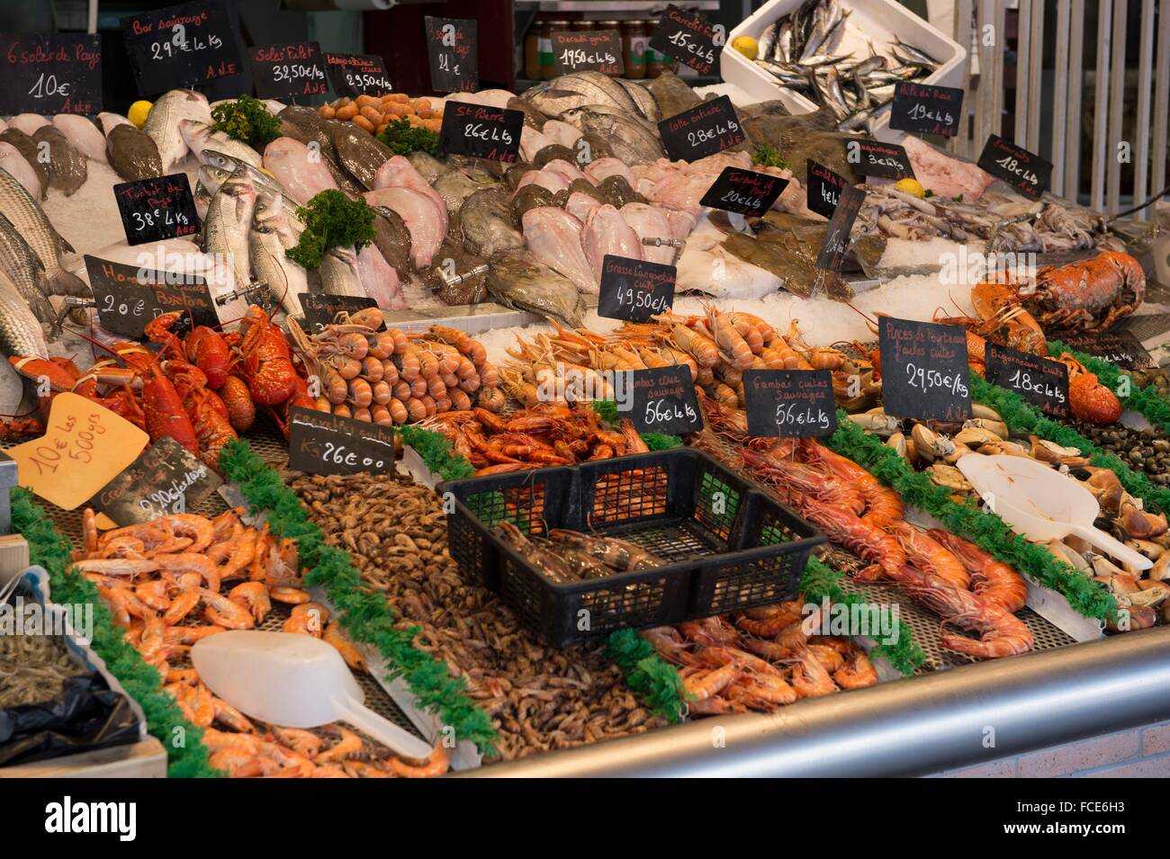 France, Normandy, fresh fishes and seefood displayed on a fish market - Stock Image
