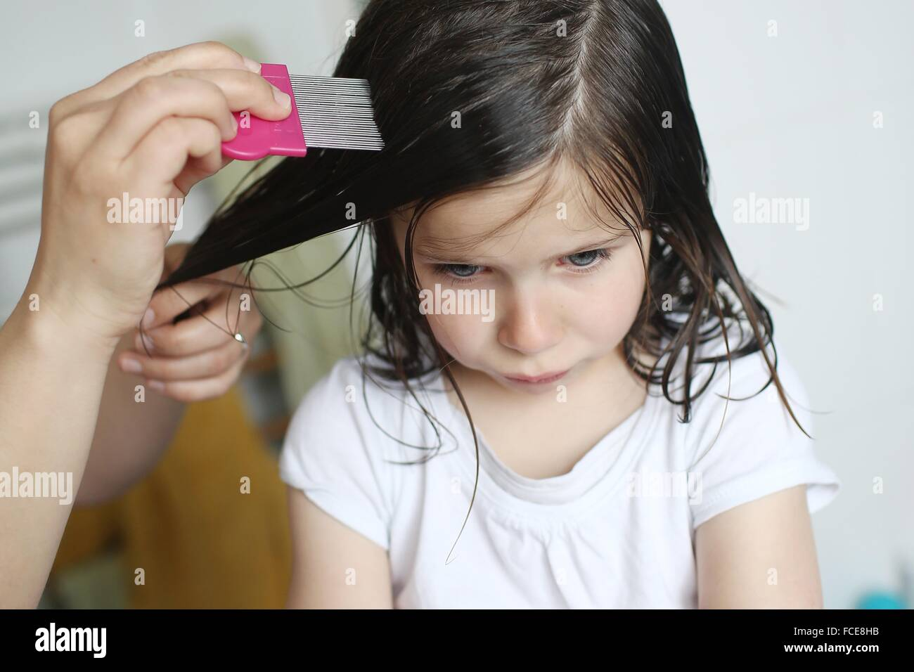A mother passes a lice comb in the hair of her 6 years old girl - Stock Image