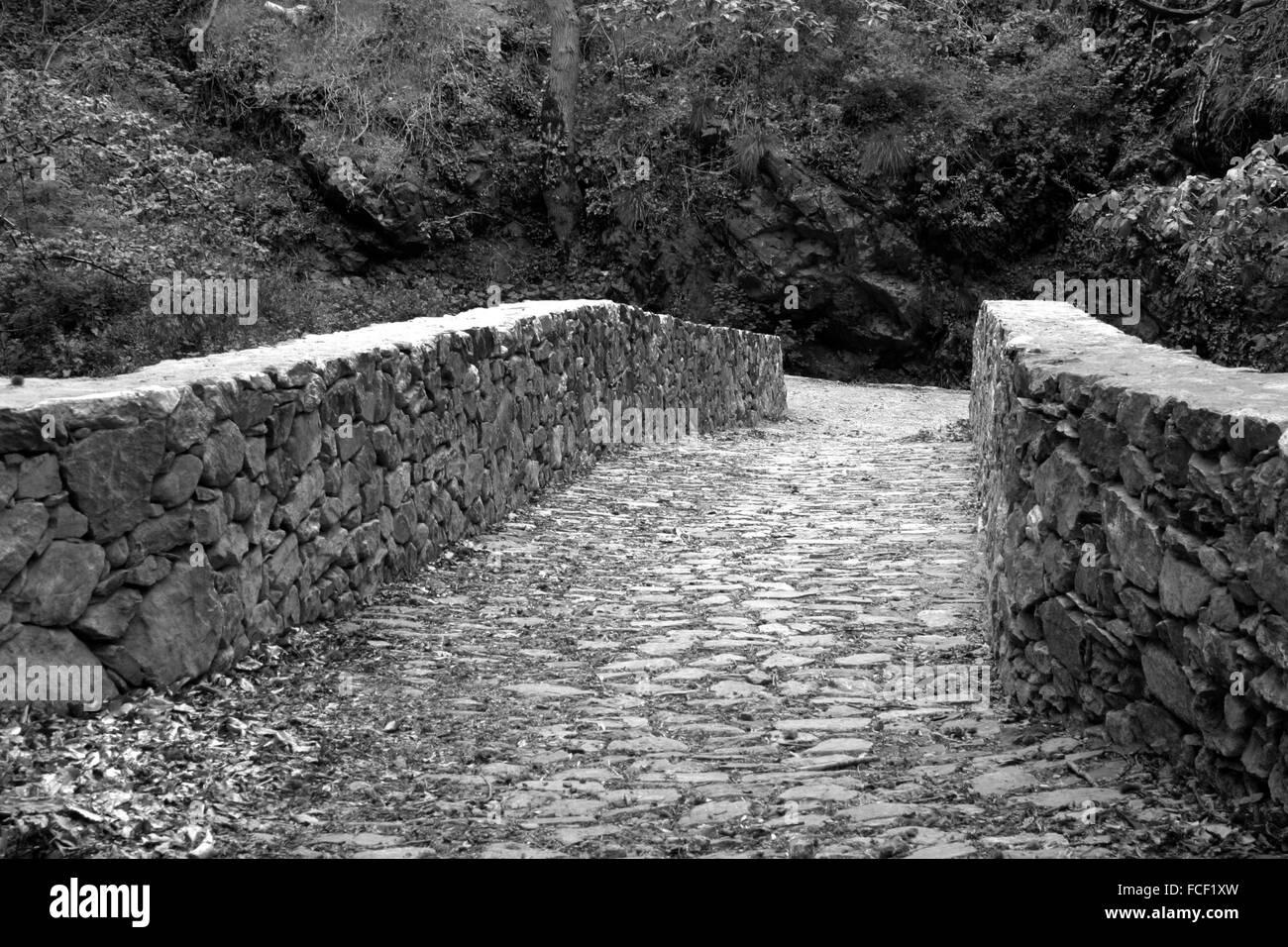 Bridge, pathway, path, lead, follow, dream, road ...