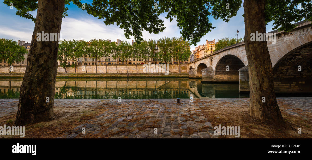 Ile Saint Louis and Pont Marie with the Seine River banks lined with aspen trees on a quiet morning in Paris, France - Stock Image