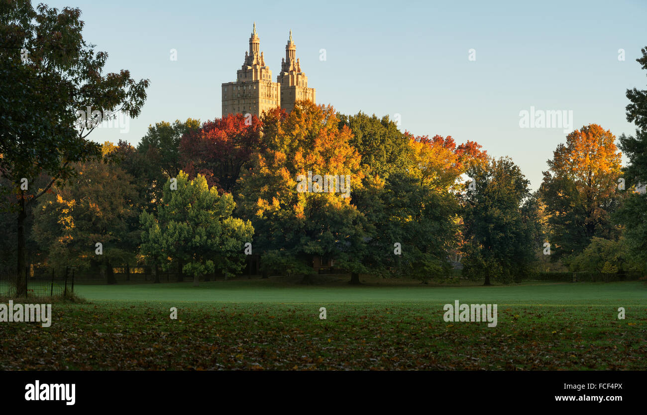 Central Park Sheep Meadow in full autumn colors with The San Remo towers in sunrise light. Fall in Manhattan, New - Stock Image