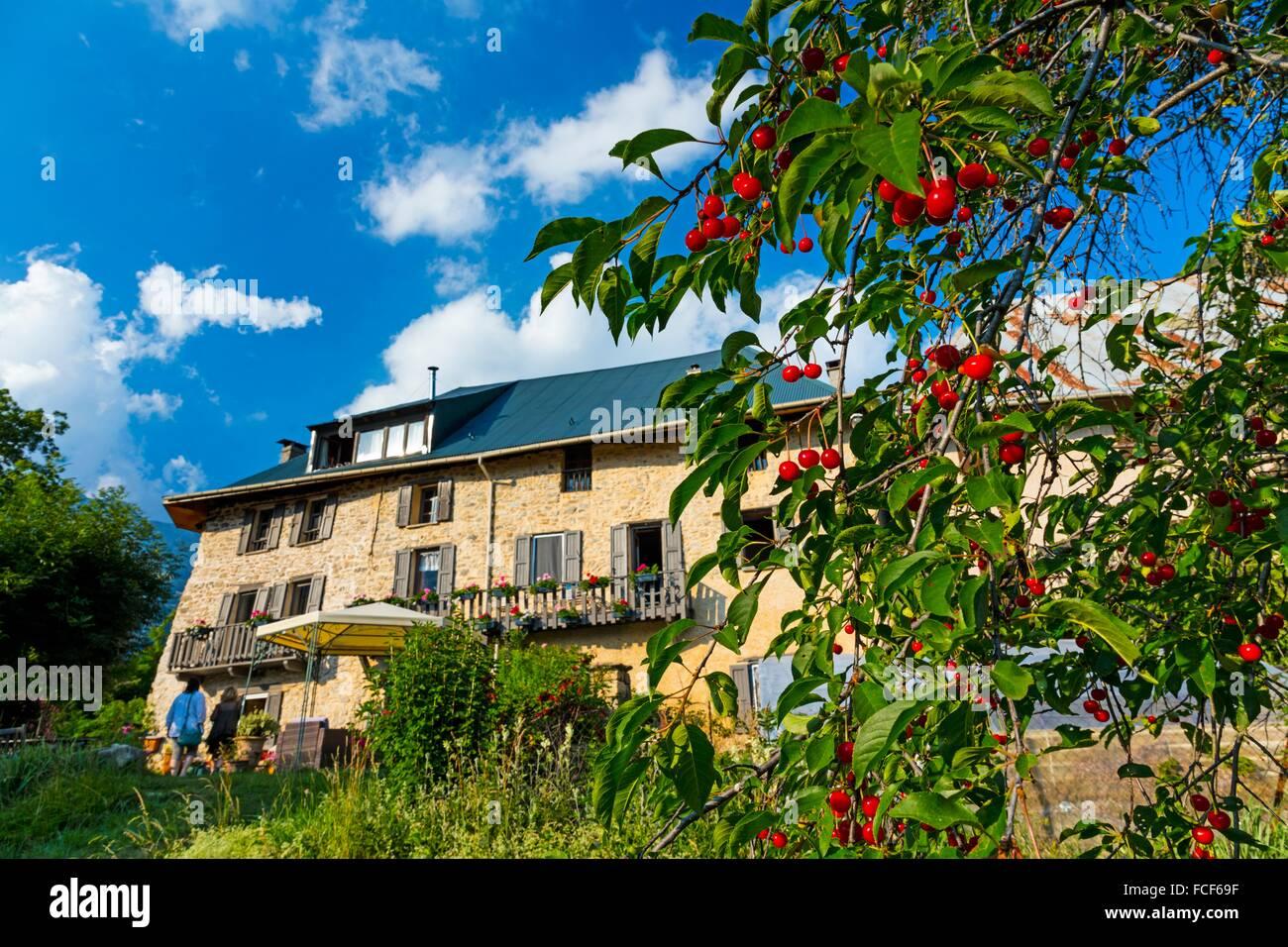 Les Méans Bed and Breakfast Farm, Méolans-Revel Village, Ubaye Valley, Alpes Haute Provence, France, Europe. - Stock Image
