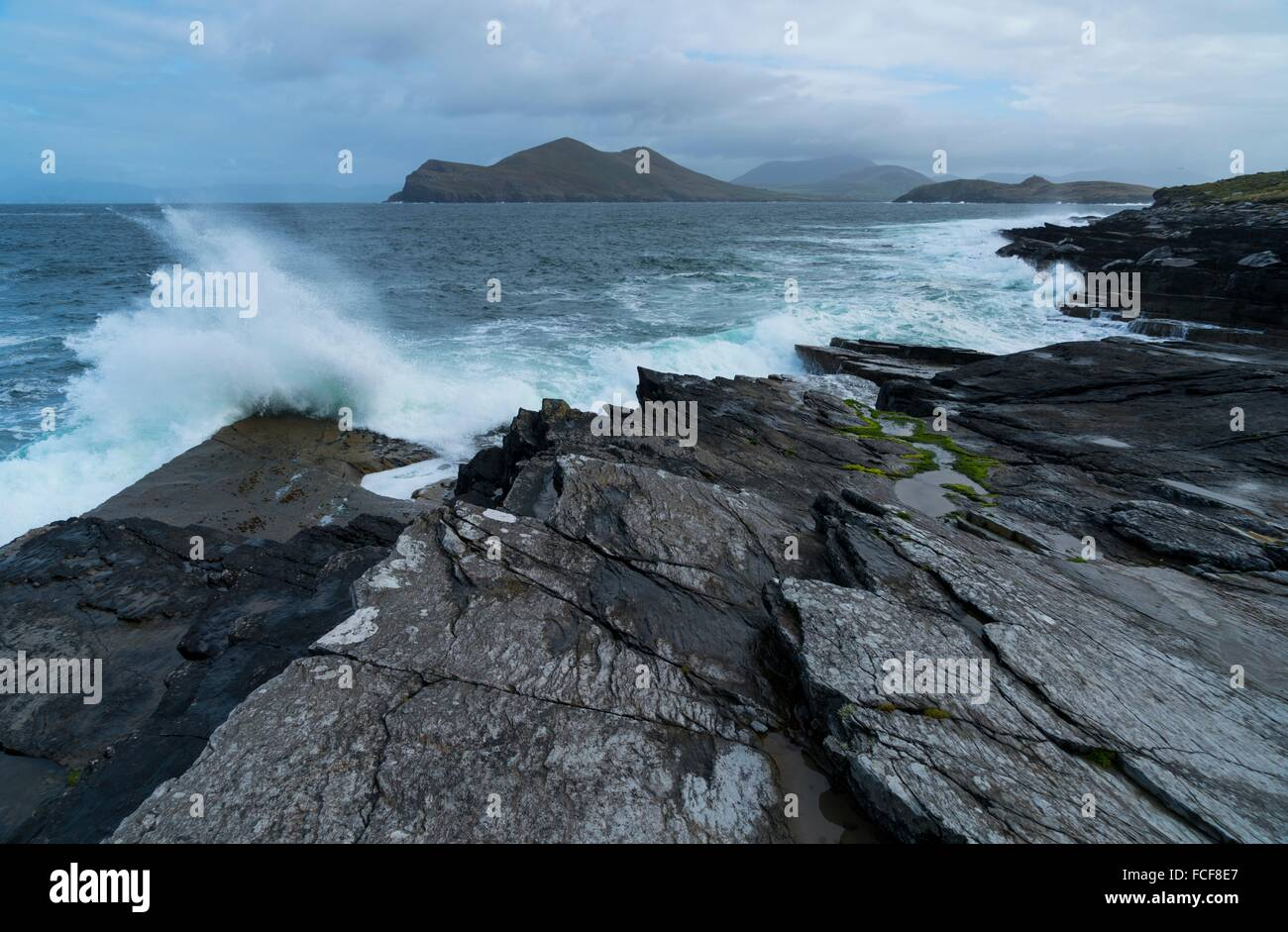 Tetrapod footprints, Valentia Island, Iveragh Peninsula, County Kerry, Ireland, Europe. - Stock Image