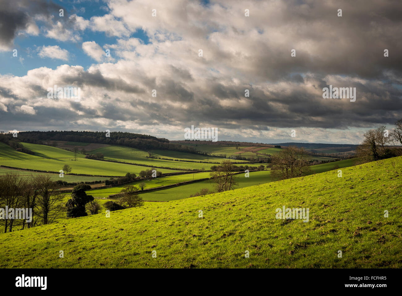 View from Court Hill in the South Downs National Park near East Dean, West Sussex, UK - Stock Image