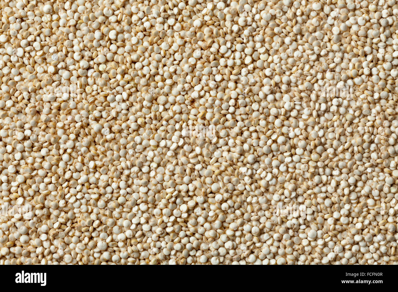 Raw Quinoa seeds full frame - Stock Image
