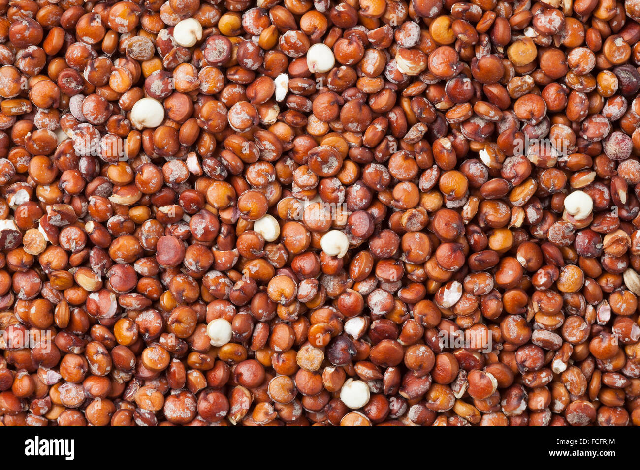 Red raw Quinoa seeds full frame - Stock Image