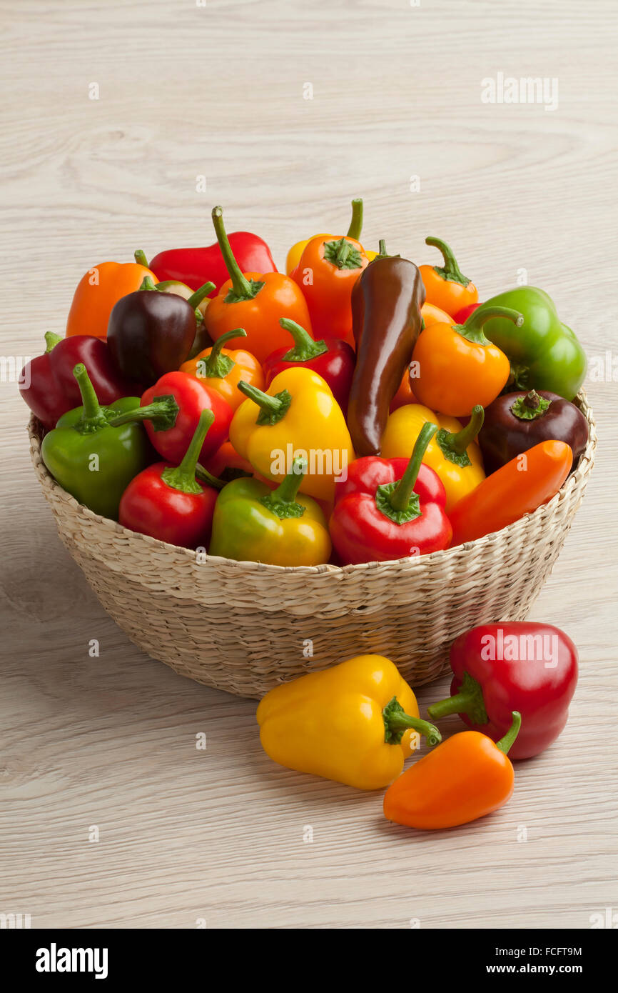 Basket filled with colorful vine sweet mini peppers - Stock Image