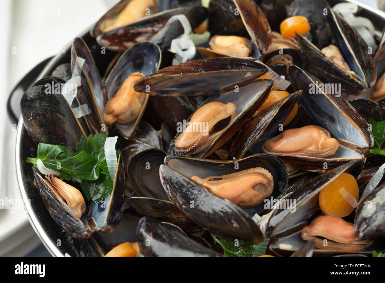Pan with fresh cooked mussels close up - Stock Image