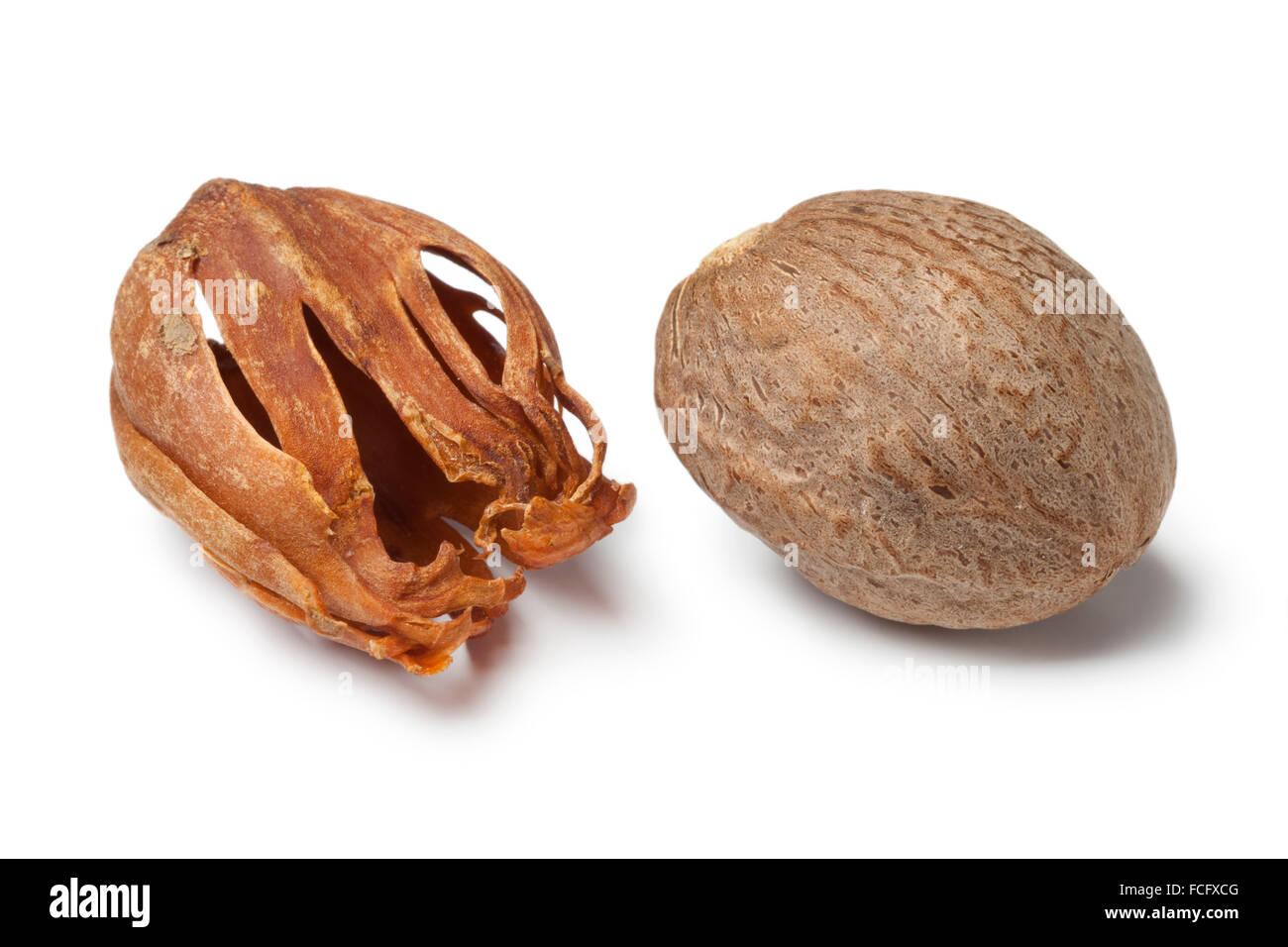 Single nutmeg kernel and mace on white background - Stock Image