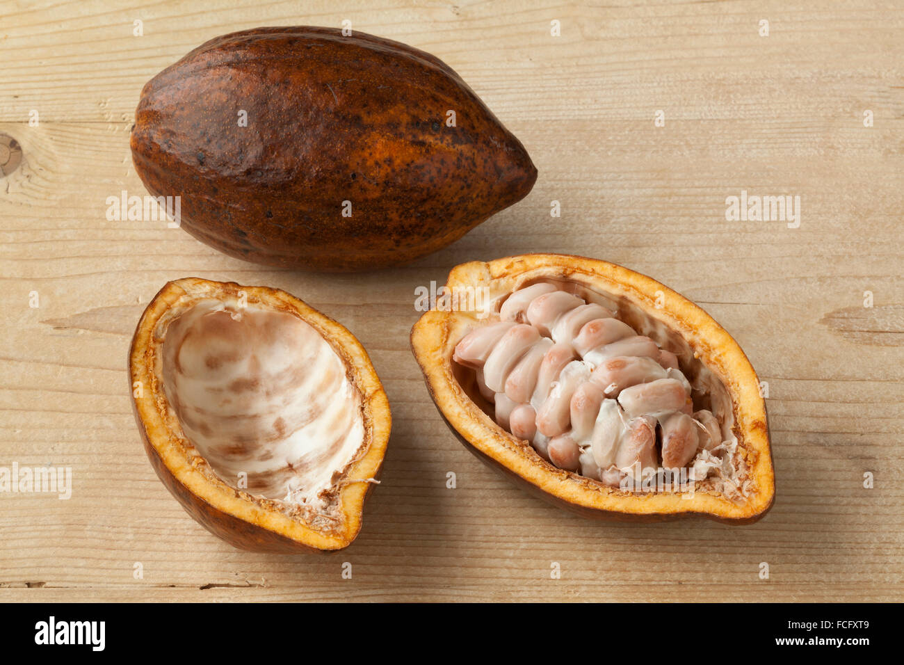 Whole and half fresh ripe cacao fruit and seeds Stock Photo