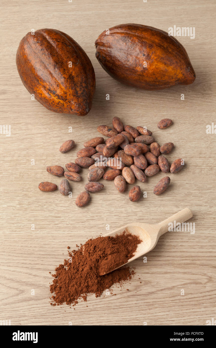 Cacao fruit, cocoa beans and cocoa powder on a wooden spoon Stock Photo