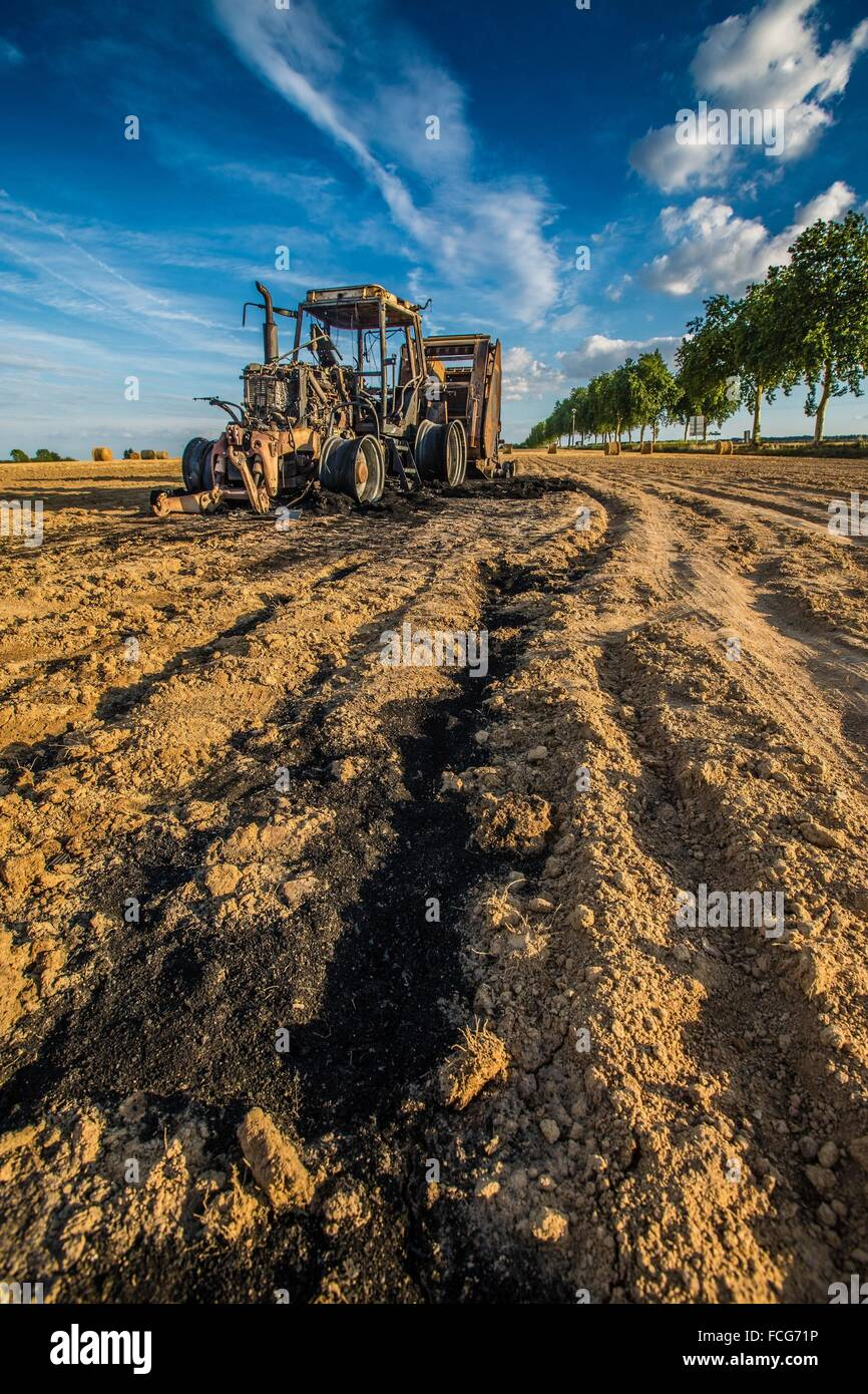 FARMING, SEES, (61) ORNE, LOWER NORMANDIE, FRANCE - Stock Image