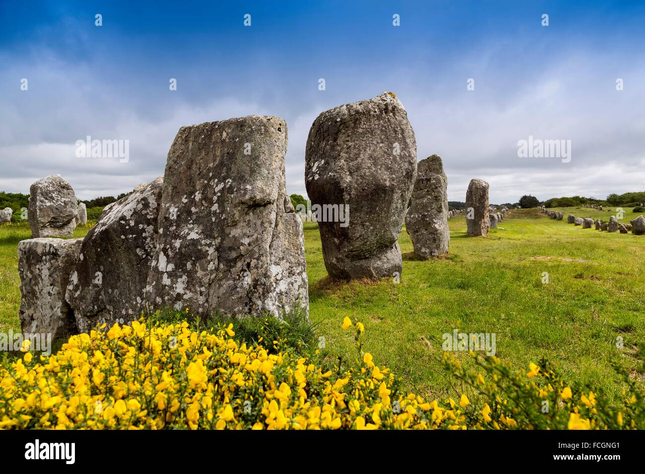 Menec alignment, dolmen, megalithic site of Carnac, Morbihan, French Brittany, France, Europe - Stock Image