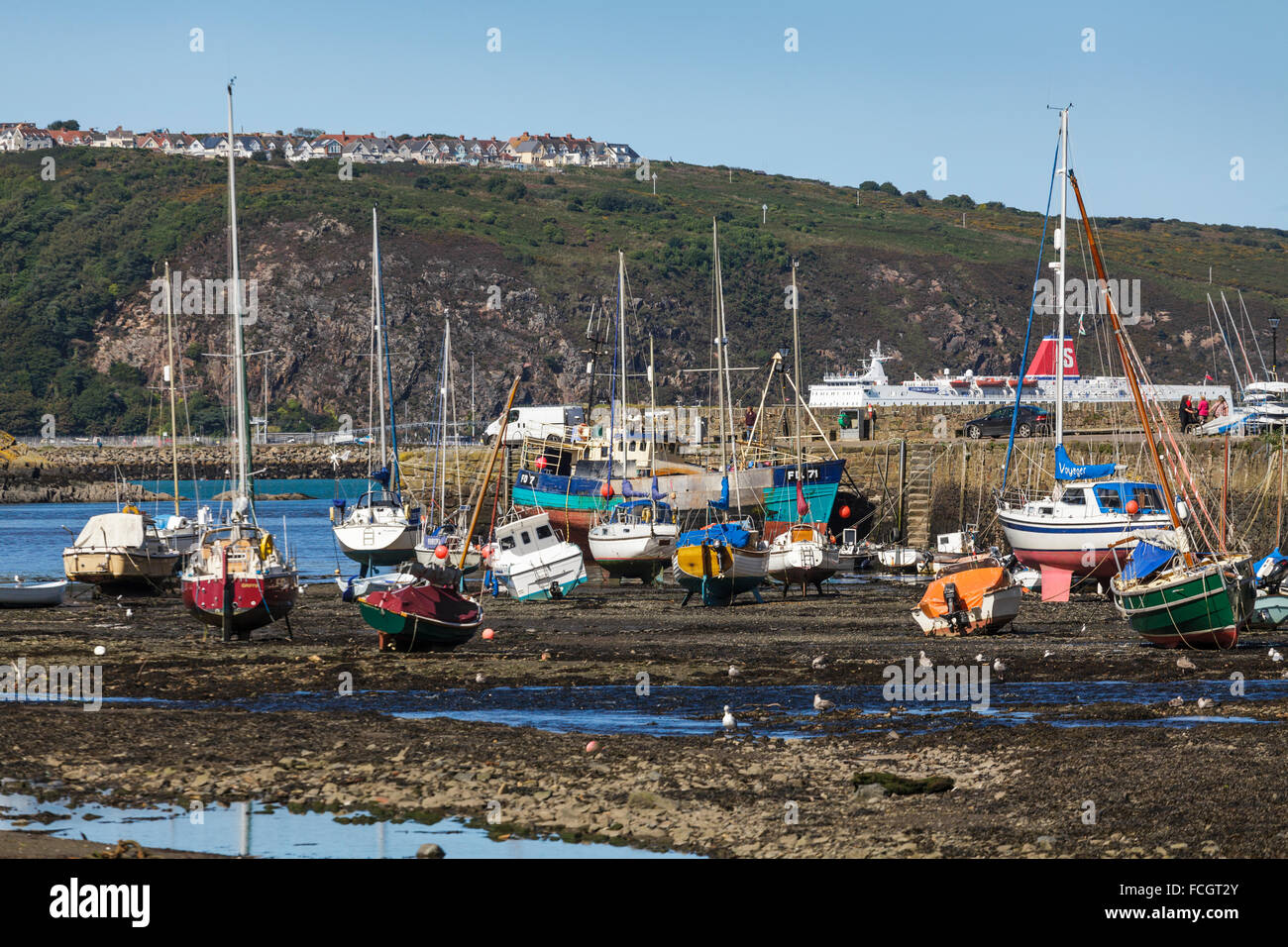 Lower Fishguard Harbour, Pembrokeshire, Wales Uk - Stock Image
