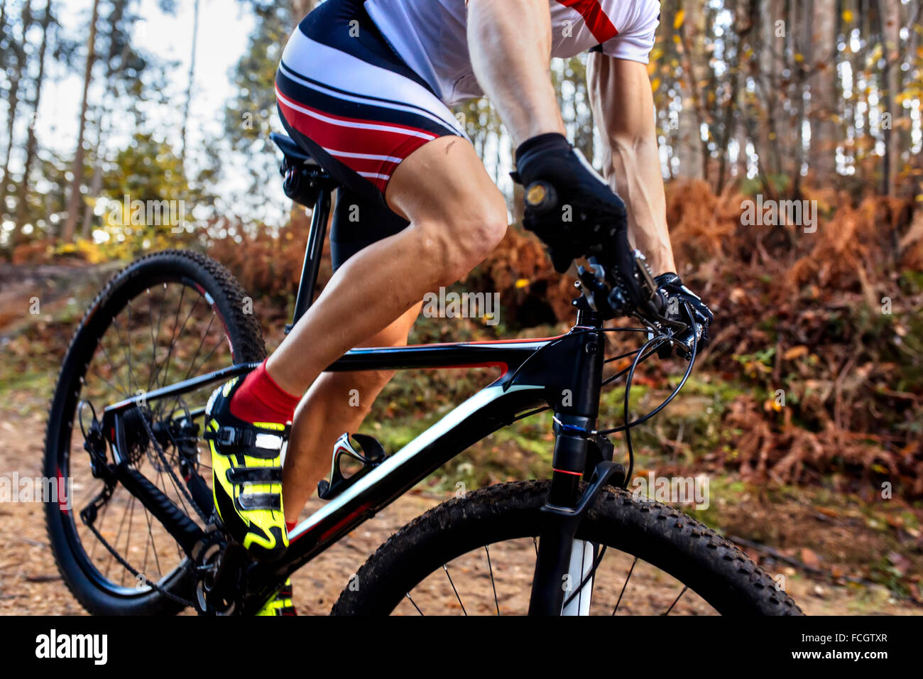 Mountain biker driving in the forest close-up - Stock Image
