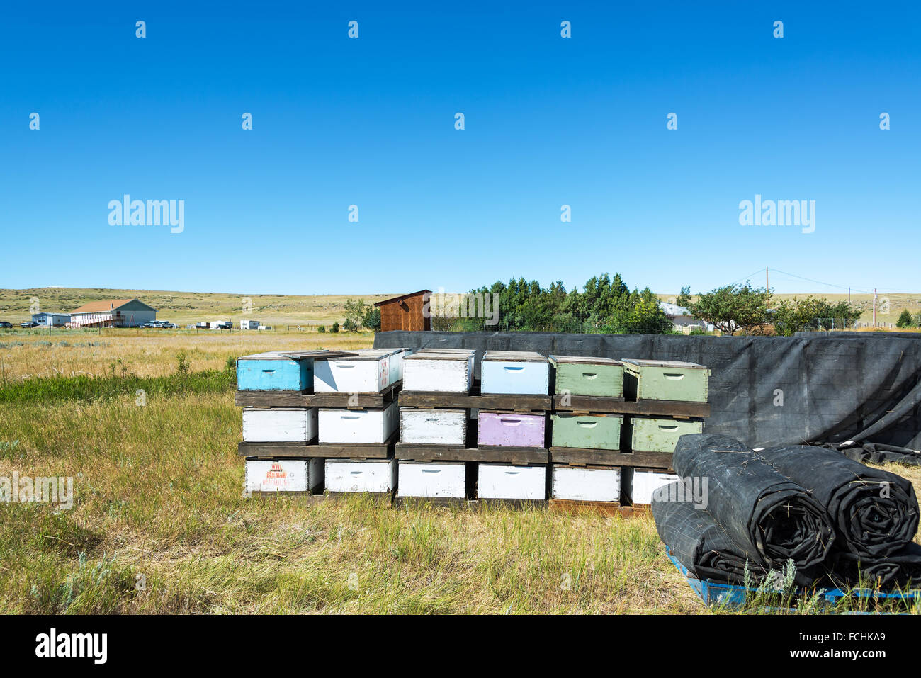 View of beehives in Buffalo, Wyoming - Stock Image