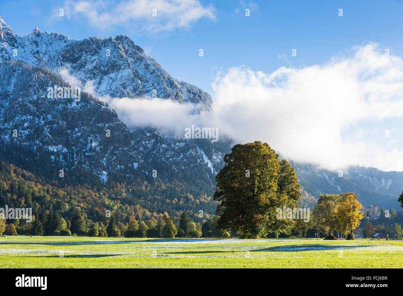 Wintery landscape in Bavaria, Germany, Europe - Stock Image
