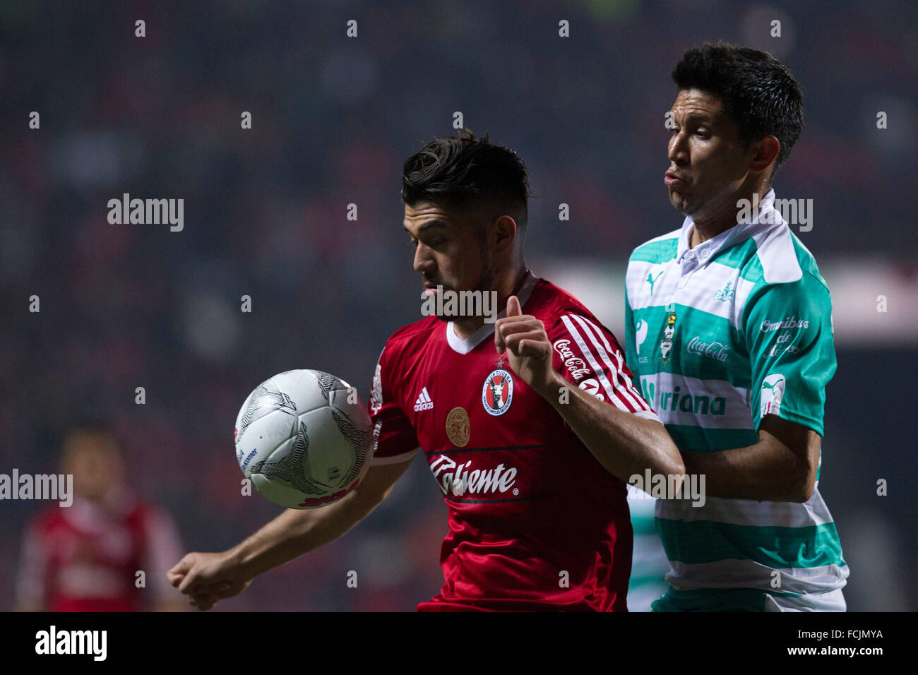 Tijuana, Mexico. 22nd Jan, 2016. Xolos' Henry Martin (L) vies with Jesus Molina of Santos during their match - Stock Image