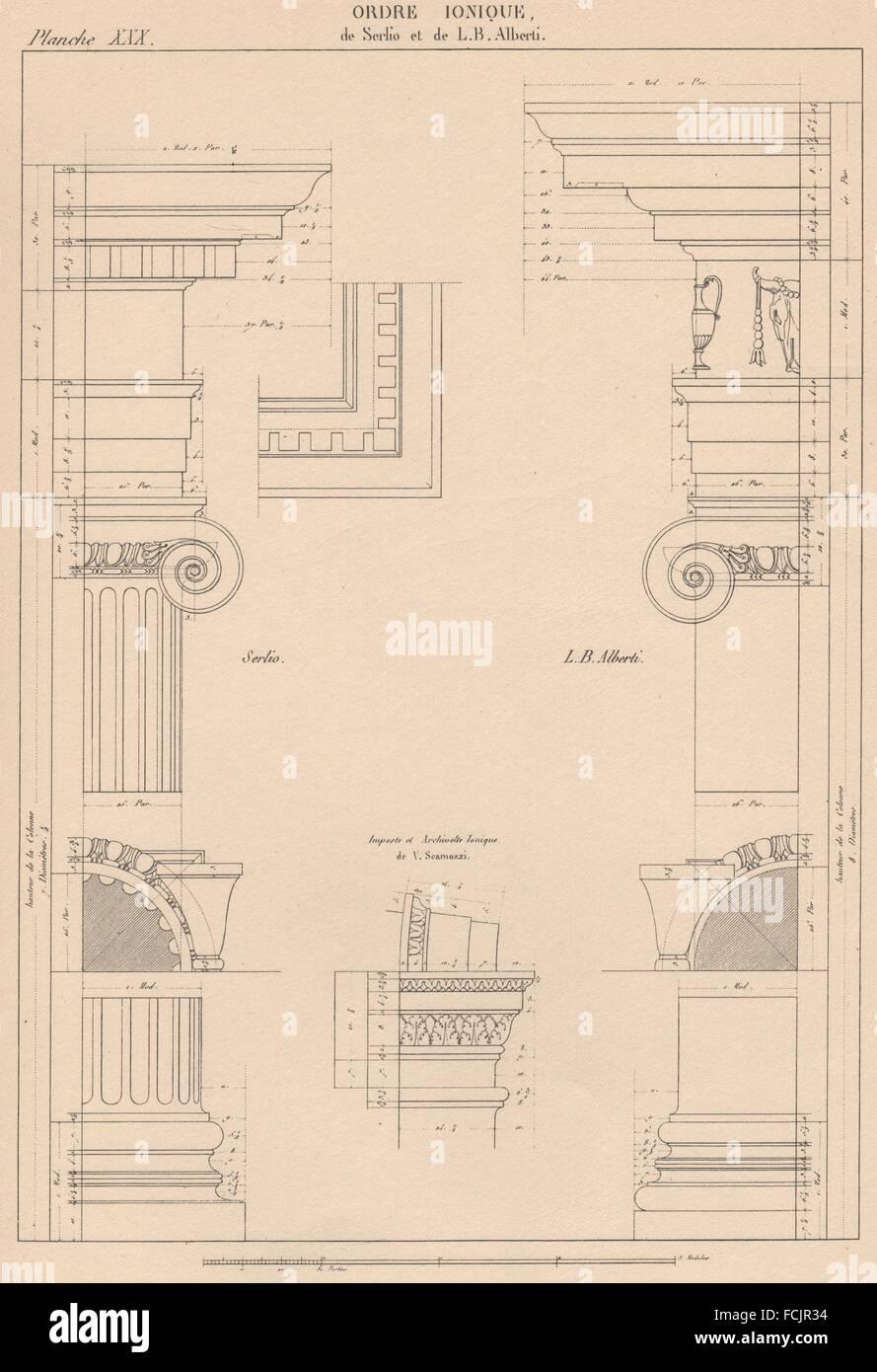 IONIC ARCHITECTURE: Base Capital and Entablature (Serlio & Alberti) , 1931 - Stock Image