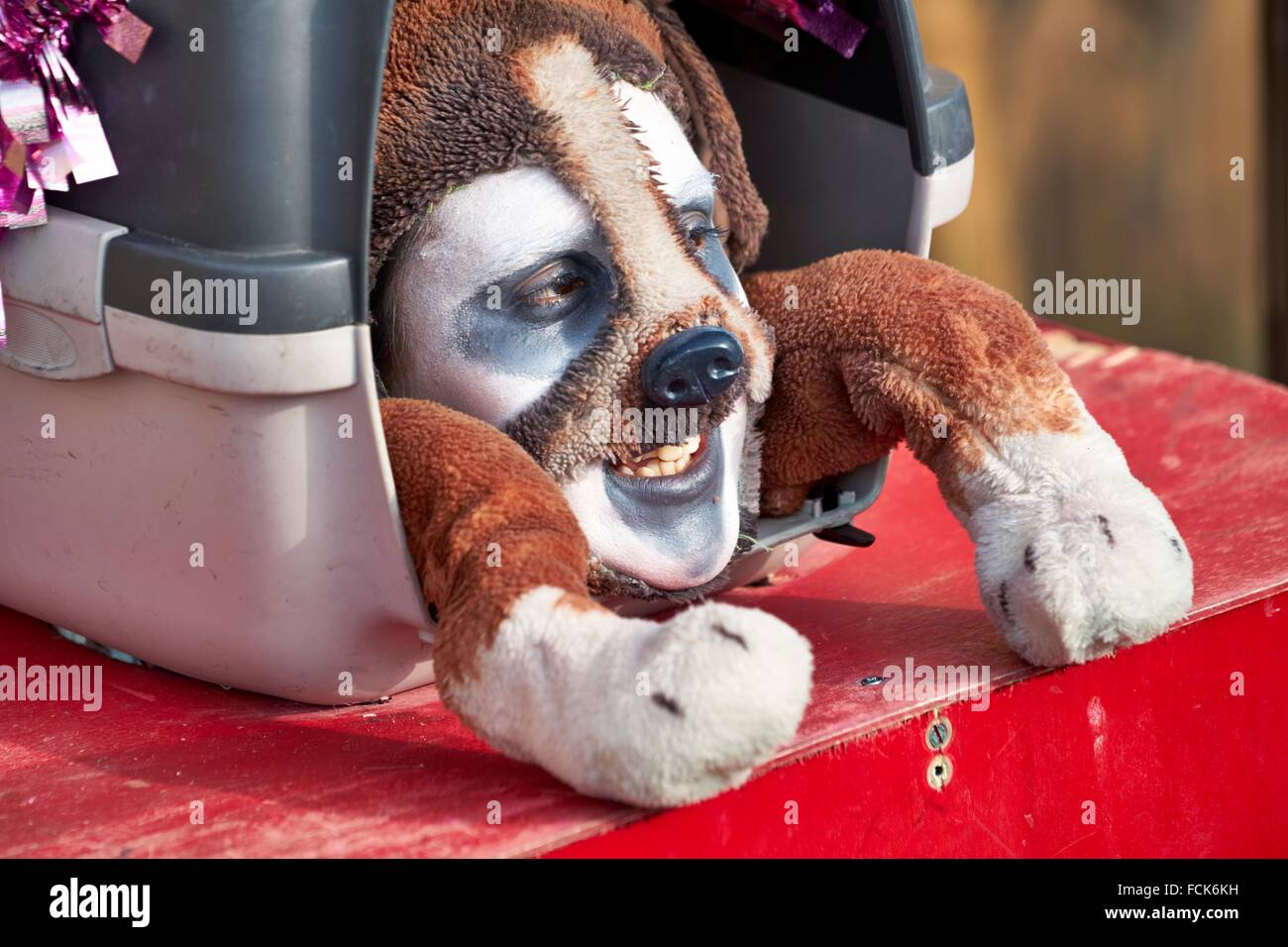 Man in dog disguise, Venice carnival, Venice, Italy - Stock Image