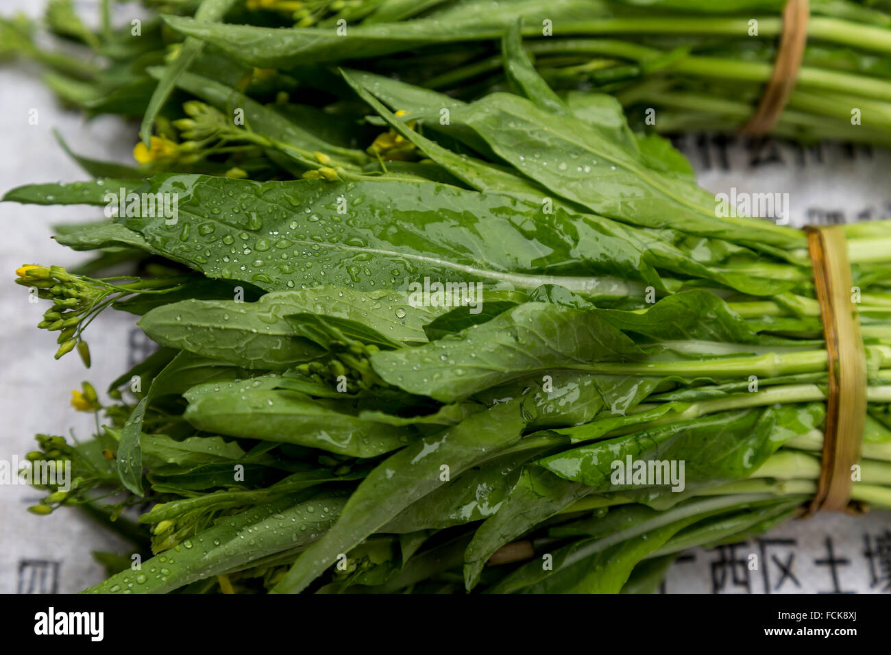 Green leafy vegetables in a market in Yangshuo, China. - Stock Image