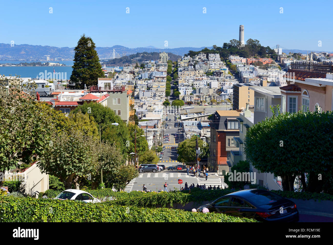 View from top of Lombard Street looking towards Telegraph Hill, San Francisco, California, USA - Stock Image
