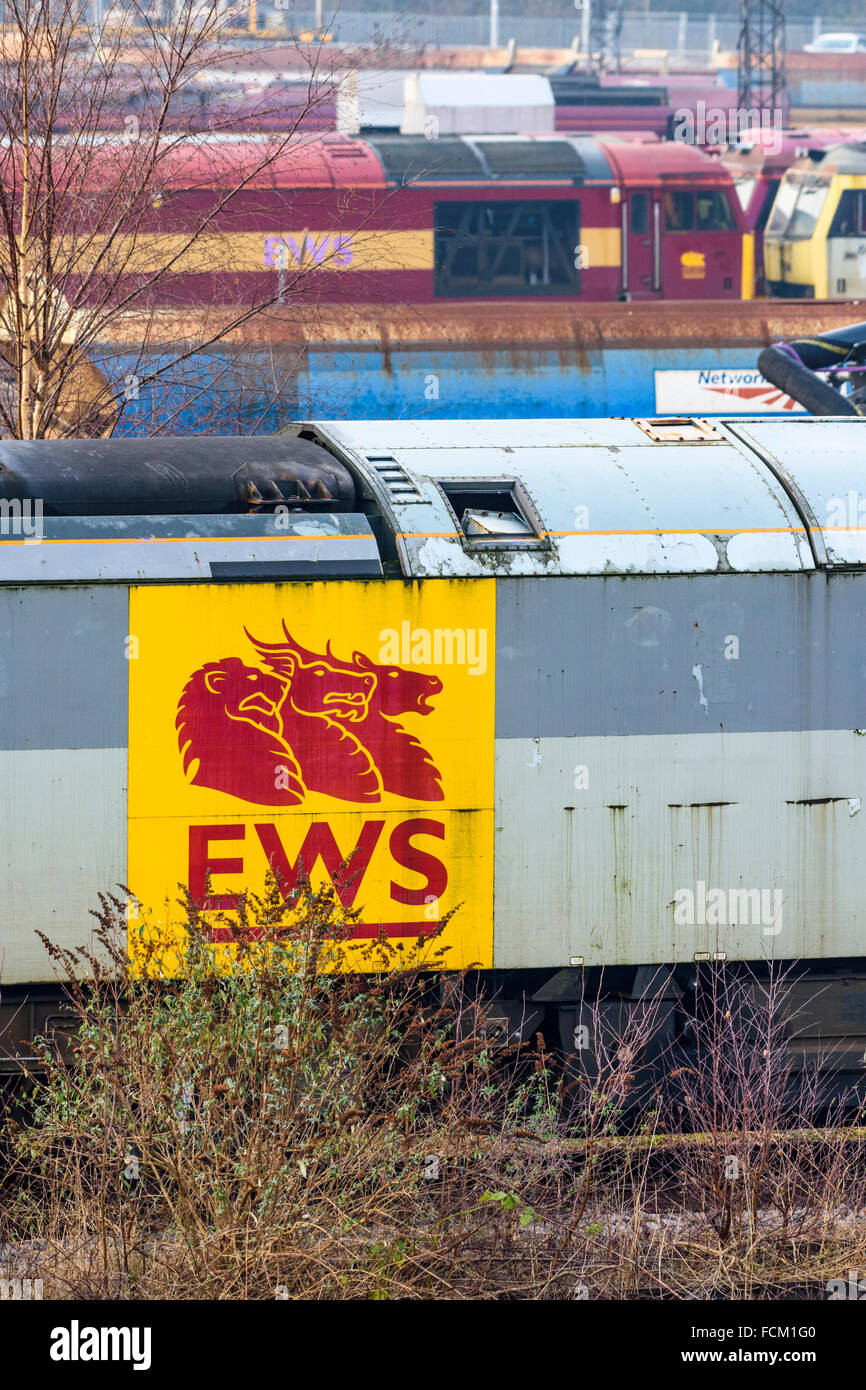 English Welsh and Scottish Railway logo on the side of a disused class 60 diesel loco at Toton depot Stock Photo