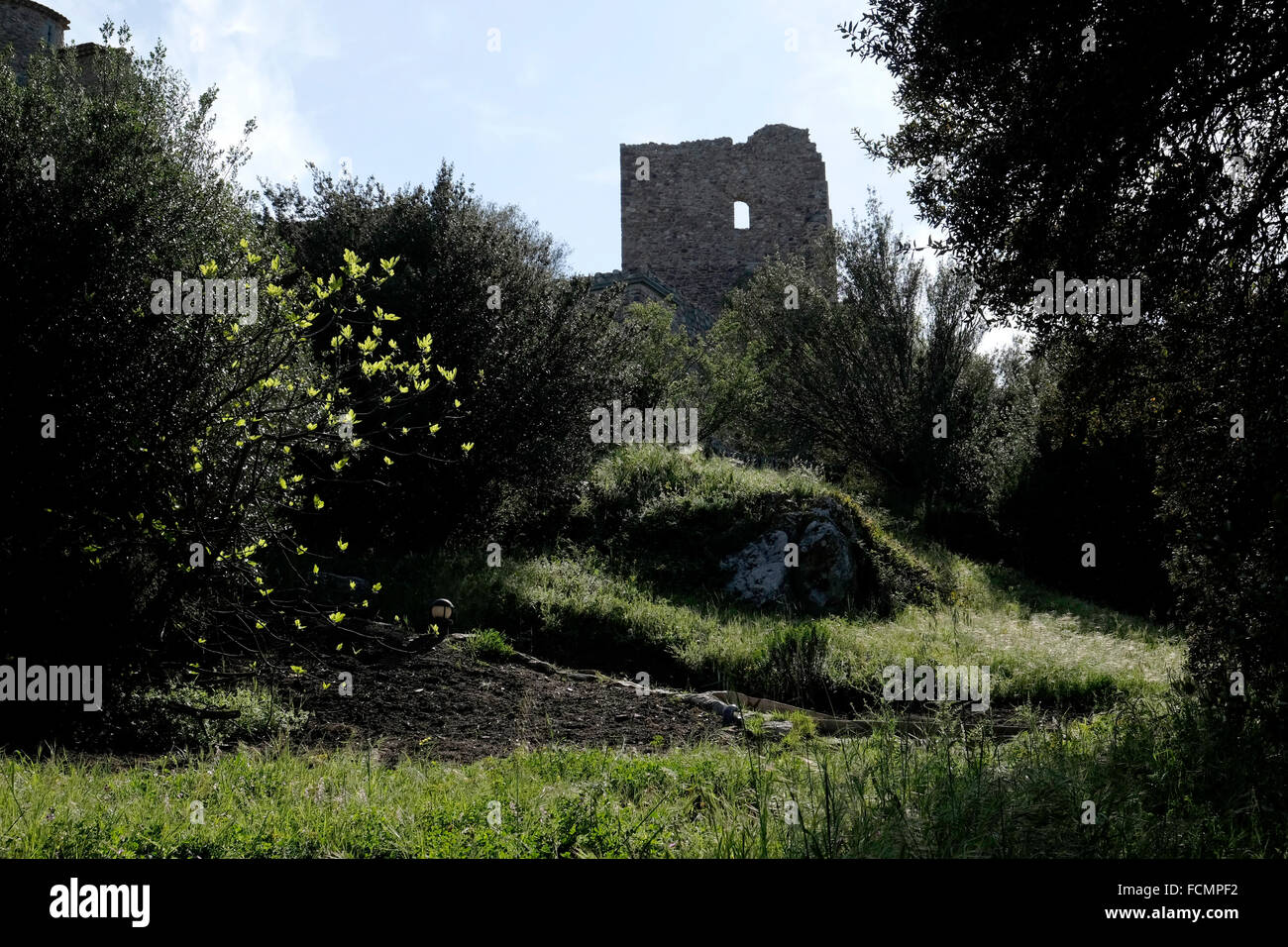 The ruined castle at Grimaud, South of France. - Stock Image