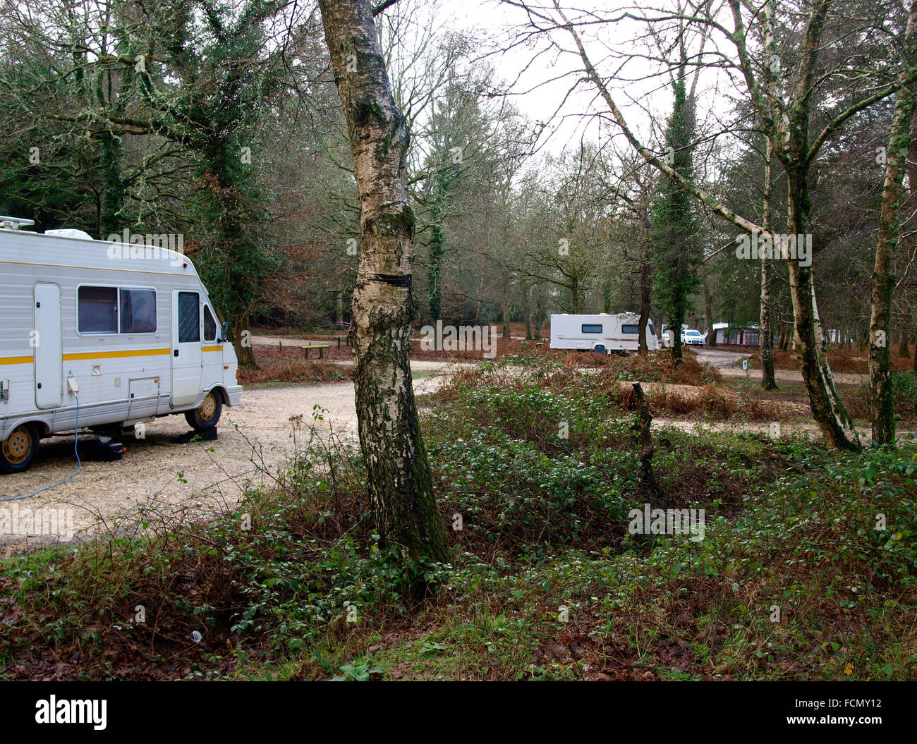 Setthorns Campsite Camping In The Forest New Forest Hampshire Uk