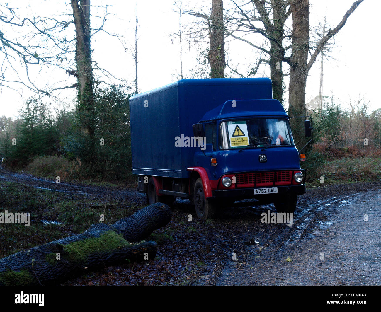 Old Bedford lorry being used in forestry, The New Forest, Hampshire, UK - Stock Image