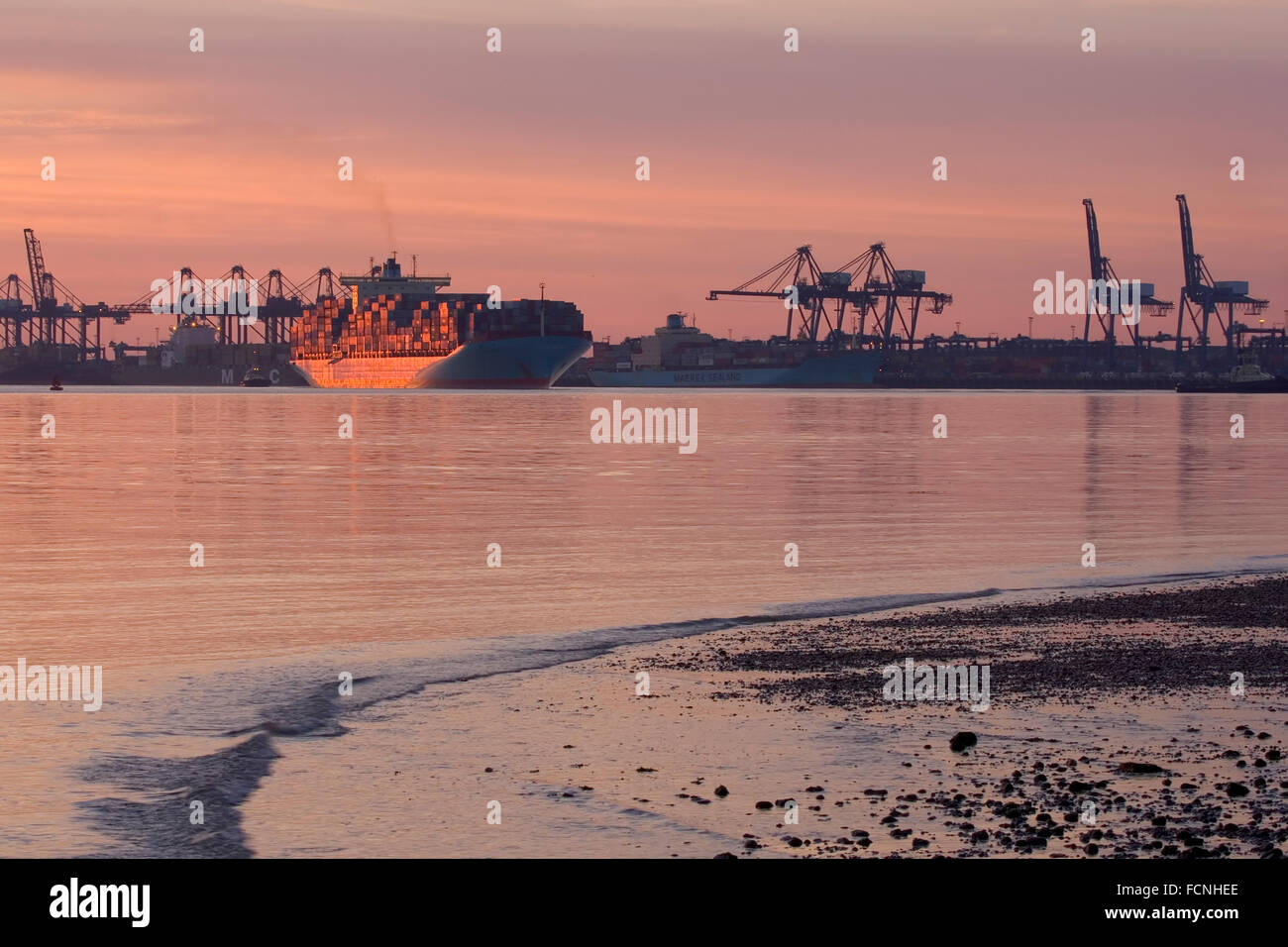 Fully laden container ship, departing from Felixstowe at sunset, with cranes and docks in the background, June 2008 - Stock Image
