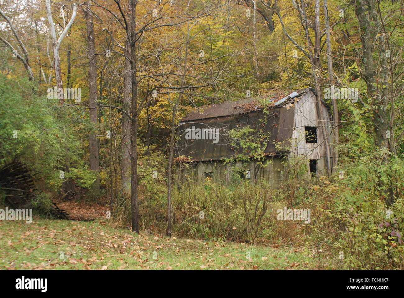 The beauty of old abandon barns - Stock Image