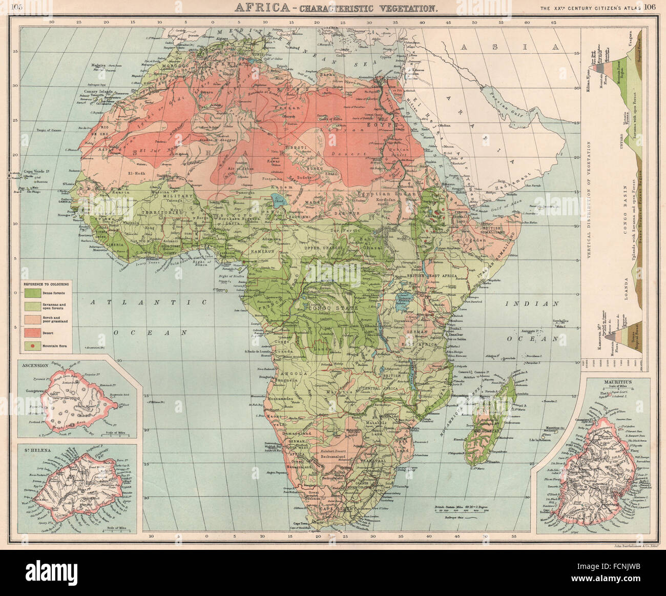 Map Of Africa Vegetation.Africa Vegetation With Vertical Distribution Of Vegetation Stock