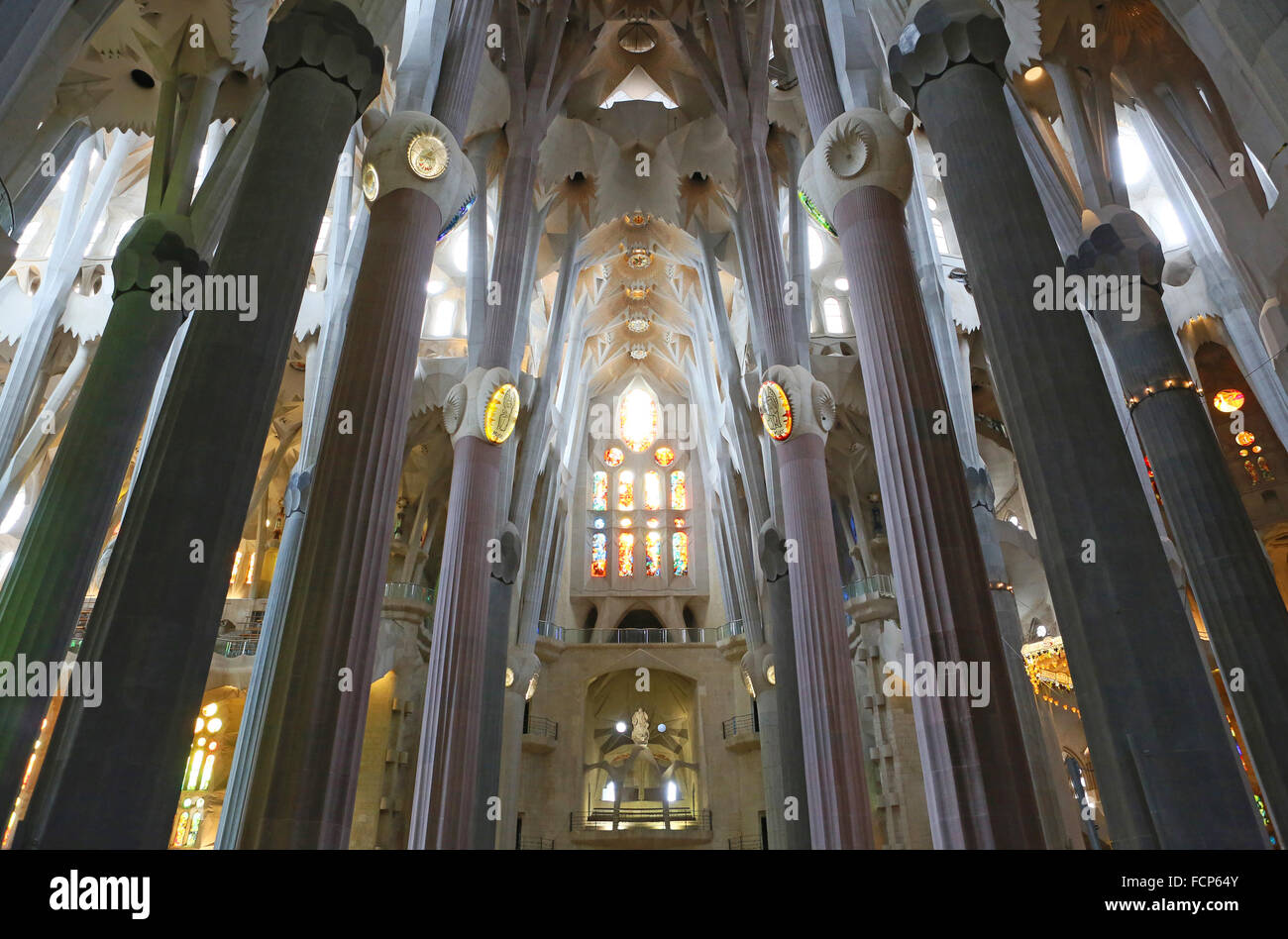 Ceiling of Basilica Sagrada Familia, Barcelona, Spain. - Stock Image
