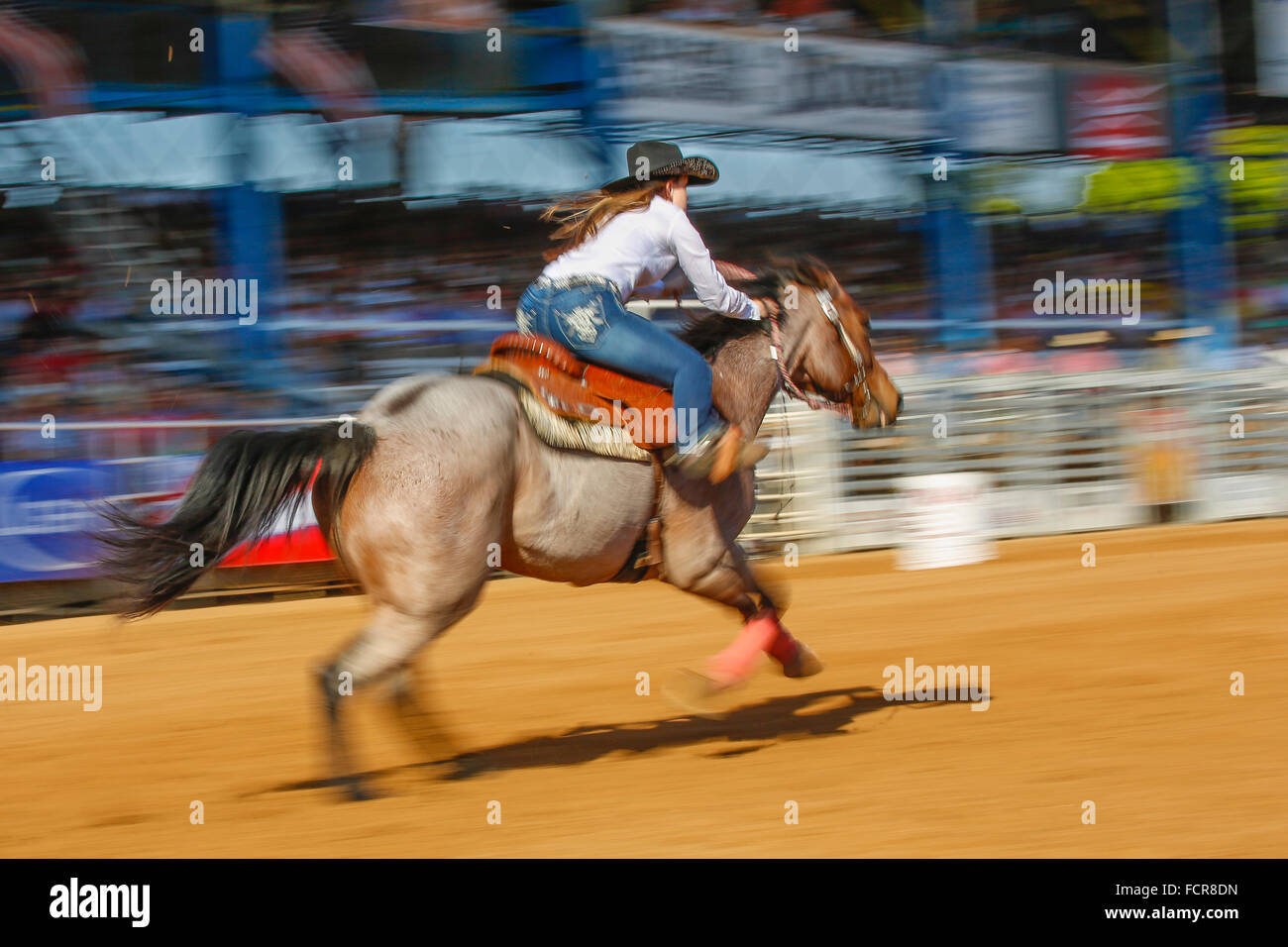 Womans barrel event at Arcadia All-Florida Championship P.R.C.A. Rodeo held in the southwestern Florida town of - Stock Image