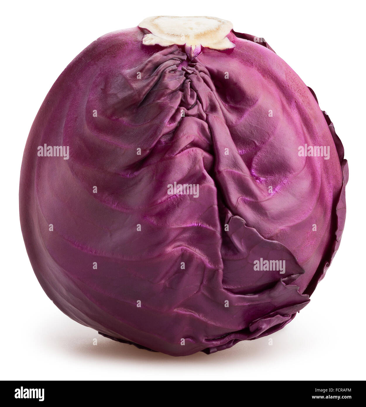 red cabbage isolated - Stock Image