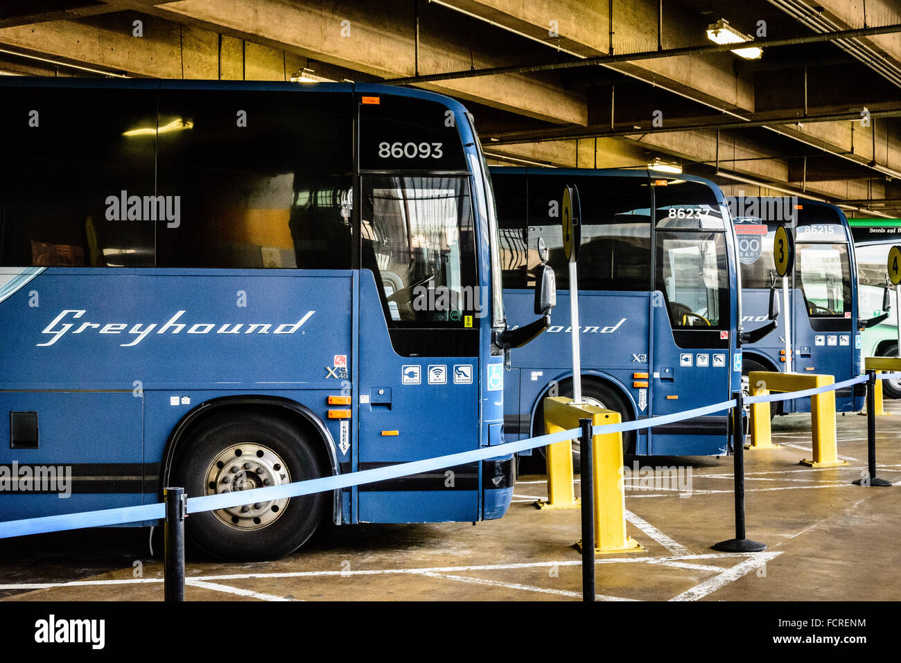 greyhound buses in union station bus terminal washington. Black Bedroom Furniture Sets. Home Design Ideas