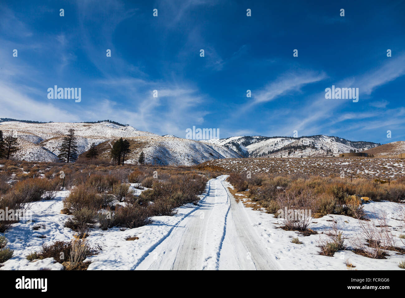 Winter Scene On The West Side Of Carson City Nevada Stock Photo