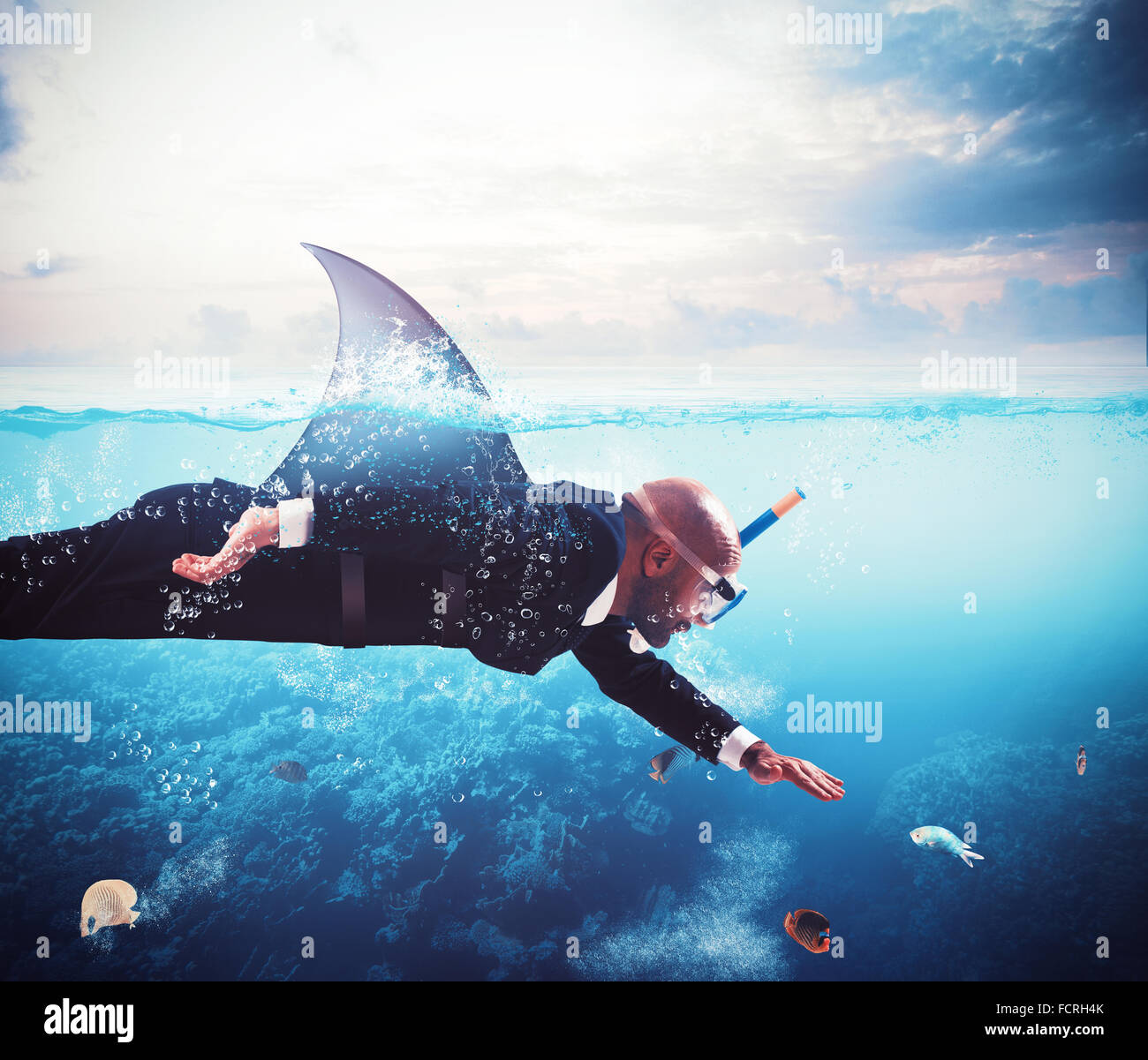Shark businessman - Stock Image