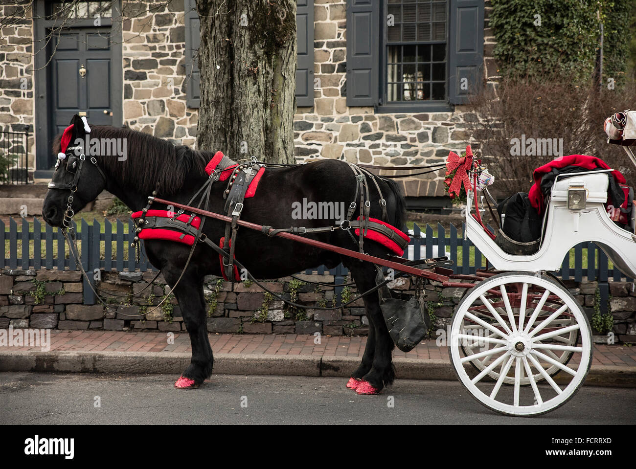 Christmas Horse Drawn Carriage High Resolution Stock Photography And Images Alamy