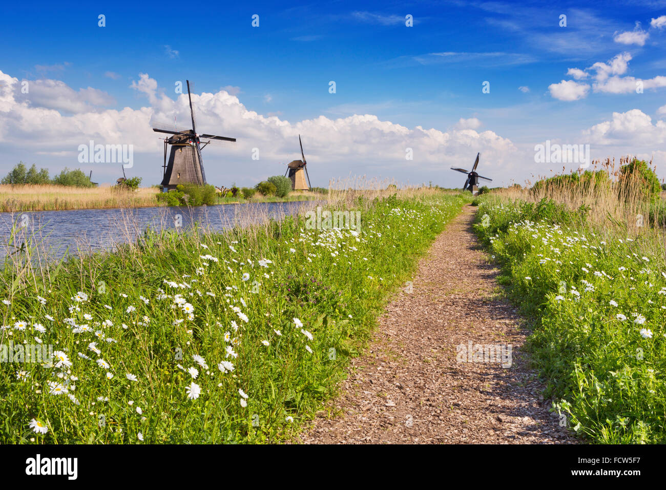 A path along traditional Dutch windmills on a bright and sunny day at the Kinderdijk in The Netherlands. Stock Photo