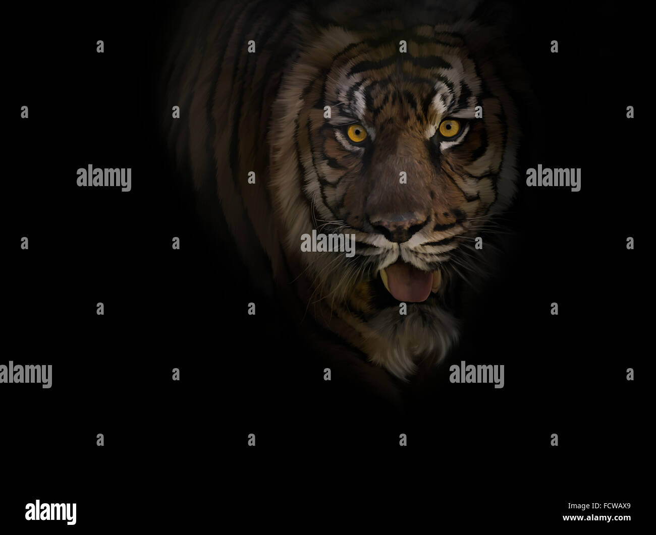 Digital Painting of Tiger ,Close Up - Stock Image